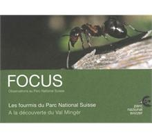 Focus Les fourmis du Parc National Suisse