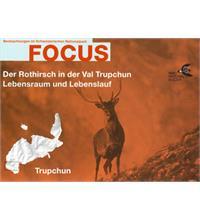 Focus Der Rothirsch in der Val Trupchun