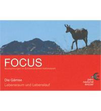 Focus Gämse