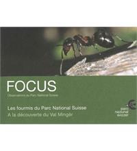 Focus Les fourmis du Parc National Suisse